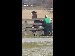 14.lama Fucking Goat